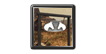 Rancho Saltwater Icon.png